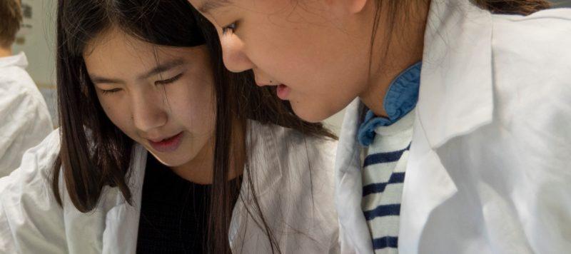 Photo de deux élèves à l'École Jeannine Manuel de Paris travaillant ensemble avec des ipads dans un laboratoire