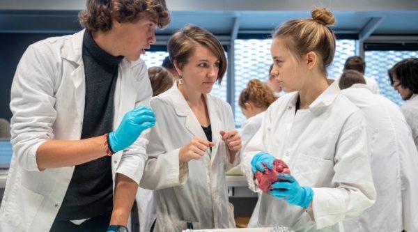 Photo d'élèves du lycée en train de faire une dissection dans un laboratoire de l'École Jeannine Manuel à Paris