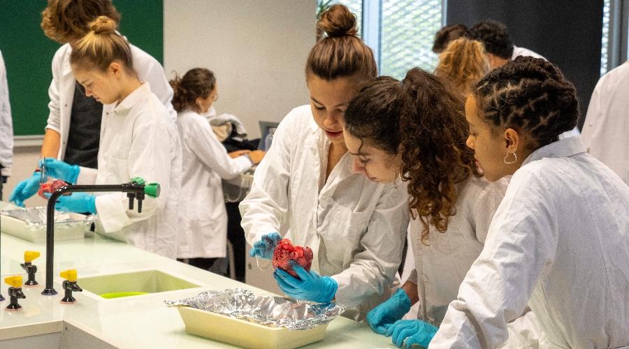 Photo d'élèves en laboratoire à l'École Jeannine Manuel de Paris