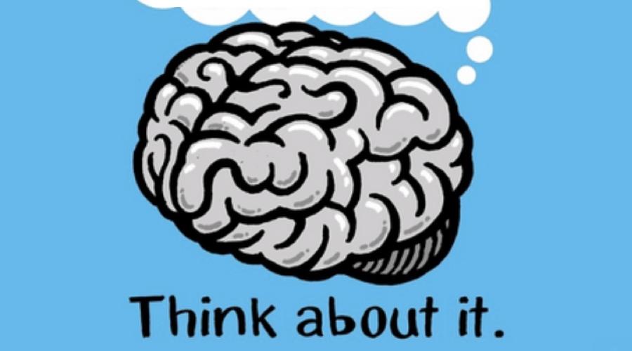 Photo de couverture pour le concours du Brainbee