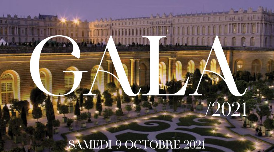 Invitation au Gala 2021 de la Fondation Jeannine Manuel avec une photo aérienne du Château de Versailles